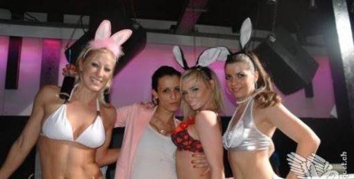 show bunny's