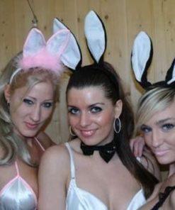 sexy bunny's