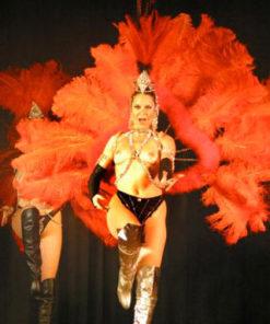 cabaret Paris plumes